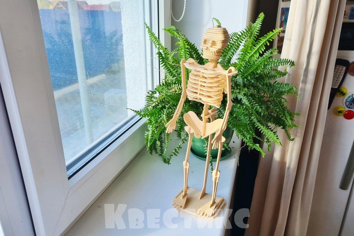 скелет хэллоуин